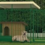 вольер для собак Барнаул