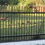 Кованый забор заказать Барнаул (29)